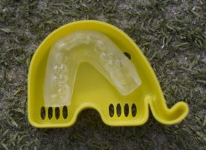 tandbeskytter2