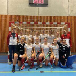 Damelandsholdet EM januar 2020